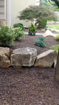 native-designs-landscaping-Boulder wall