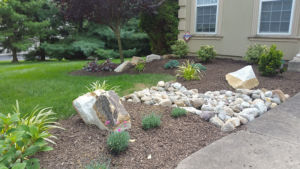 native-designs-landscaping-Oaks garden